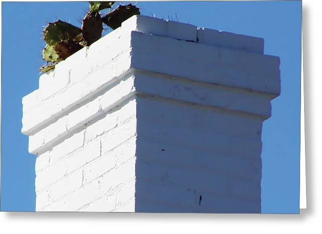Cedar Key Photographs Greeting Cards - Cactus In The Chimney Greeting Card by D Hackett