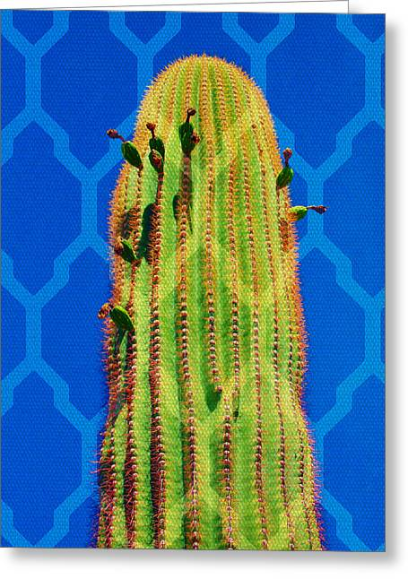 Michelle Greeting Cards - Cactus Weave Greeting Card by Michelle Dallocchio
