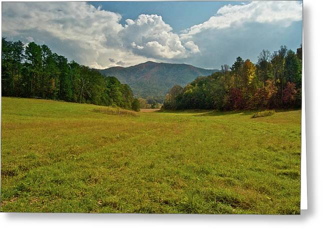 Cades Greeting Cards - Cades Cove Pasture Greeting Card by Michael Peychich