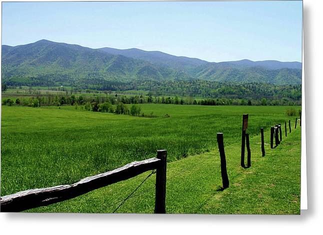 Cades Cove View Greeting Card by Nancy Mueller