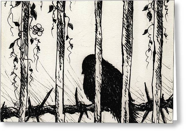 Caged Bird Greeting Card by Rachel Christine Nowicki