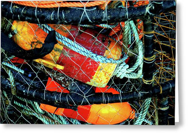 Crab Traps Greeting Cards - Caged Greeting Card by Robert Trauth