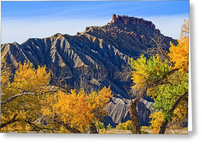 Mancos Greeting Cards - Caineville Mesa in Fall Colors Greeting Card by Utah Images