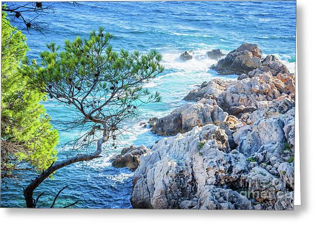 Mediterranean Landscape Photographs Greeting Cards - Calanque Greeting Card by Delphimages Photo Creations
