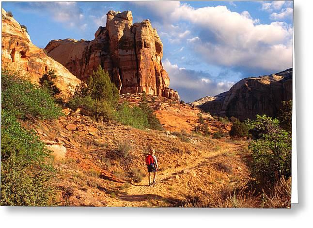 Best Sellers -  - Slickrock Greeting Cards - Calf Creek Canyon Escalante Utah Greeting Card by Utah Images