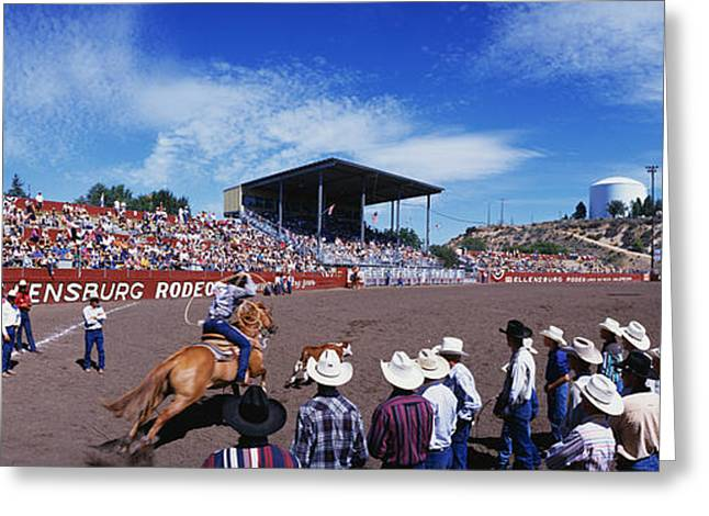 Labor Day Greeting Cards - Calf Roping Event At Ellensburg Rodeo Greeting Card by Panoramic Images