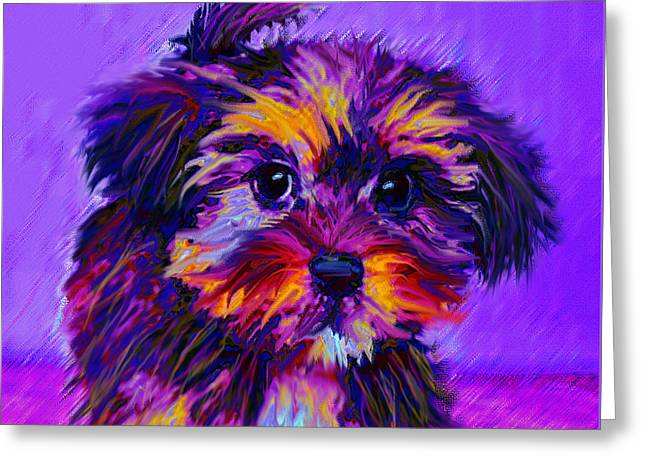 Puppy Digital Art Greeting Cards - Calico Dog Greeting Card by Jane Schnetlage