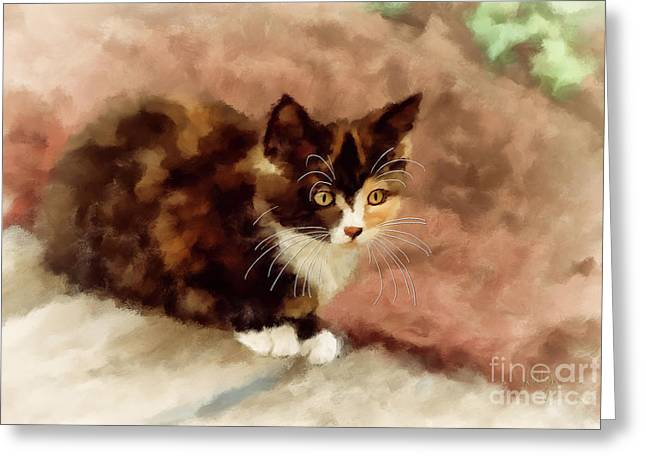 Calico Kitten Greeting Card by Lois Bryan