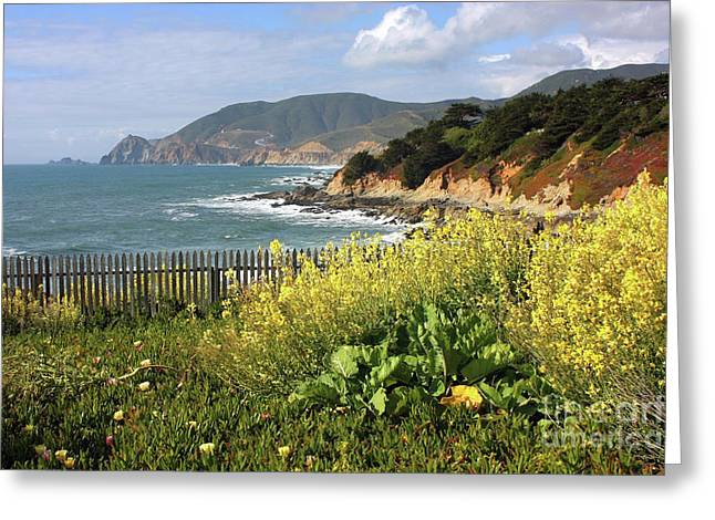 California Coastline Greeting Cards - California Coast with Wildflowers and Fence Greeting Card by Carol Groenen