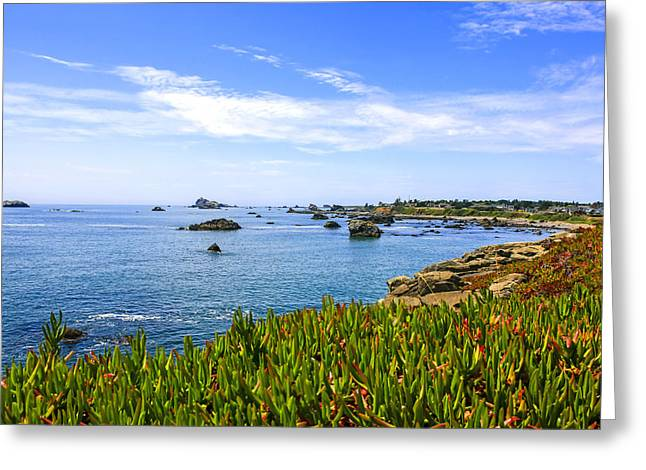 Outlook Greeting Cards - California Coastal Summer Greeting Card by Chris Smith