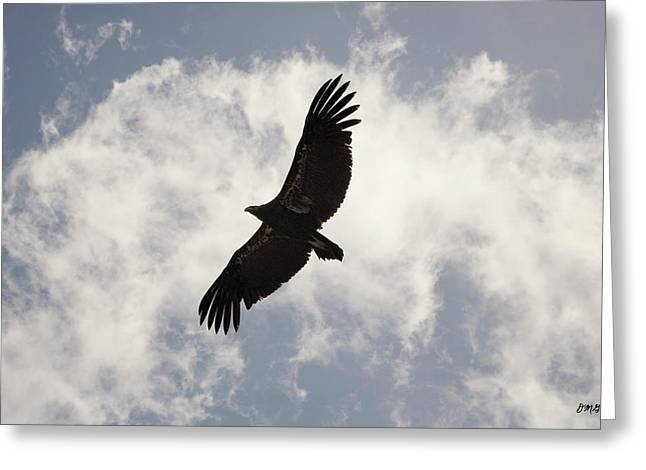 Big Sur California Greeting Cards - California Condor in Flight Greeting Card by David Gordon