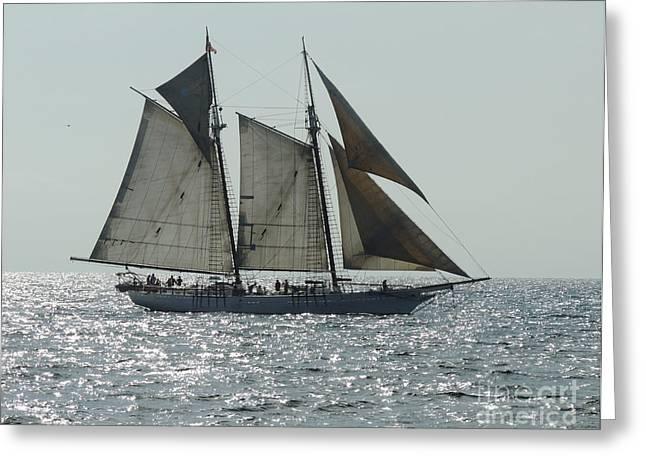 Sailing Boat Photographs Greeting Cards - California Dreaming 1 Greeting Card by Chris Walter