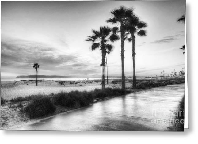 California Beach Art Greeting Cards - California Dreaming BW Greeting Card by Mel Steinhauer