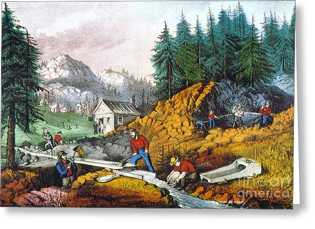 Prospector Greeting Cards - California: Gold Mining Greeting Card by Granger
