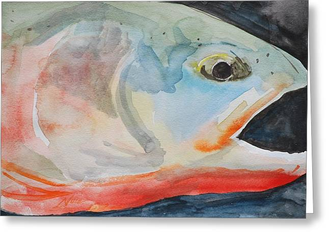 Golden Trout Greeting Cards - California Golden Trout Greeting Card by James Nuce