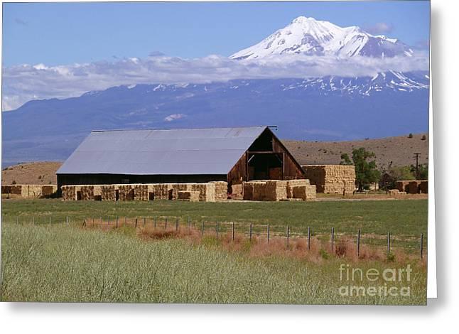 Hay Bales Digital Greeting Cards - California Hay Barn Greeting Card by Methune Hively