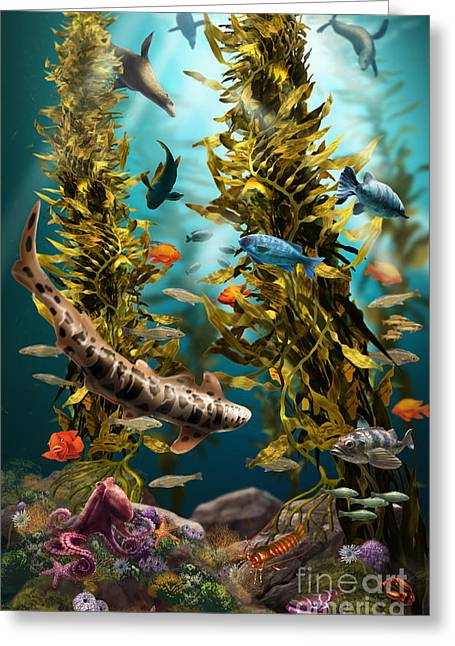 California Kelp Forest Greeting Card by Jim Dowdalls