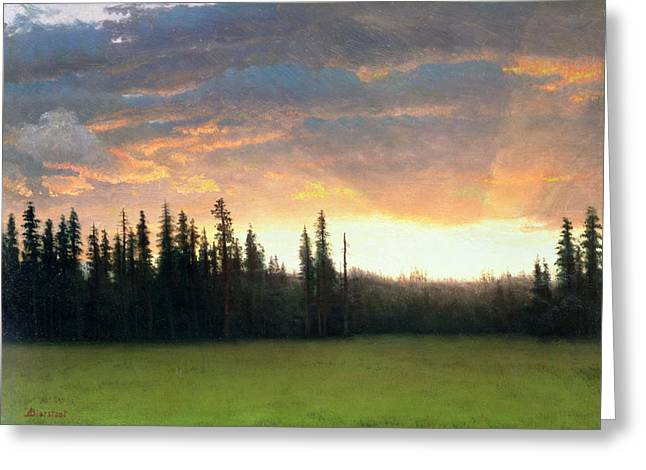 California Sunset Greeting Card by Albert Bierstadt