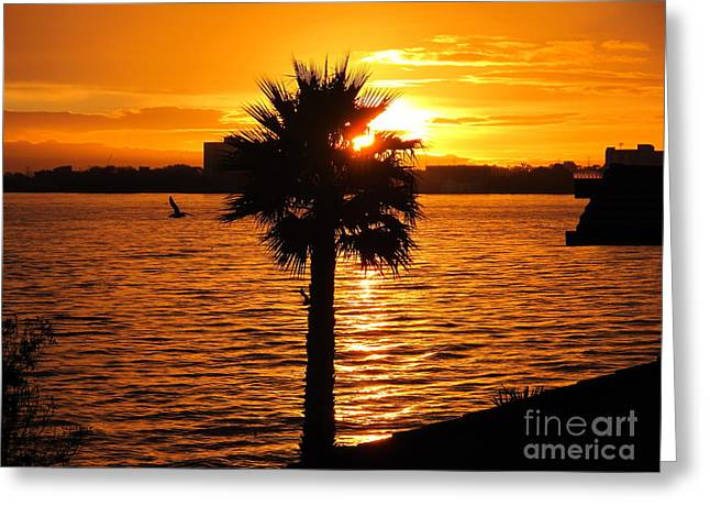 California Ocean Photography Paintings Greeting Cards - California Sunset Greeting Card by Laurie DeVault