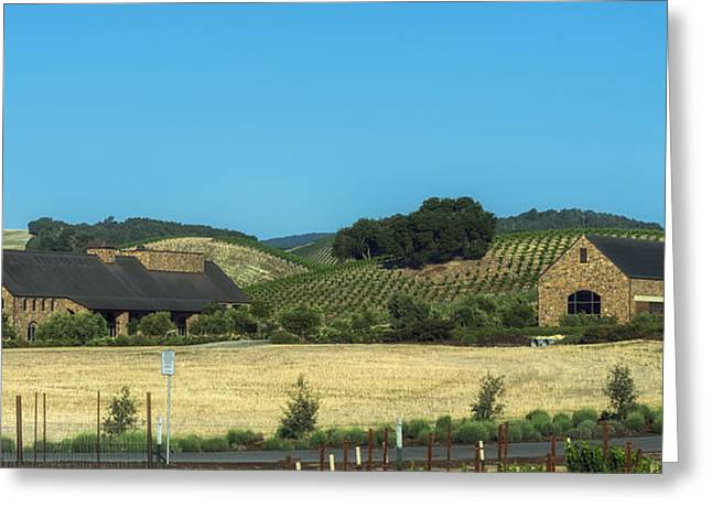 California Vineyard Greeting Cards - California Vineyard And Winery Greeting Card by Mountain Dreams