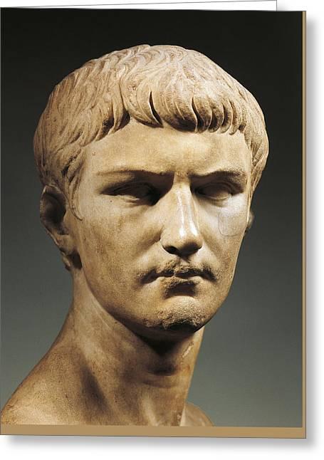 Caligula Greeting Card by Roman School