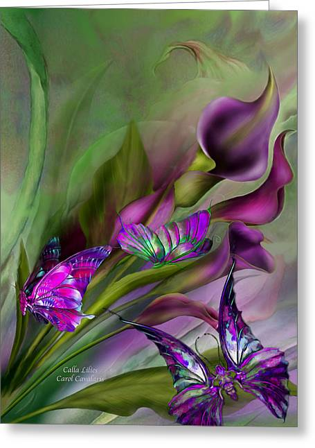 Calla Lilies Greeting Card by Carol Cavalaris
