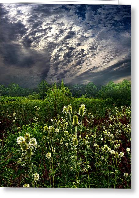 Summer Storm Greeting Cards - Calling Home Greeting Card by Phil Koch