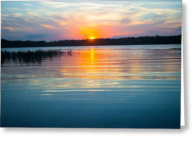 Gainesville Greeting Cards - Calm Beauty Greeting Card by Parker Cunningham