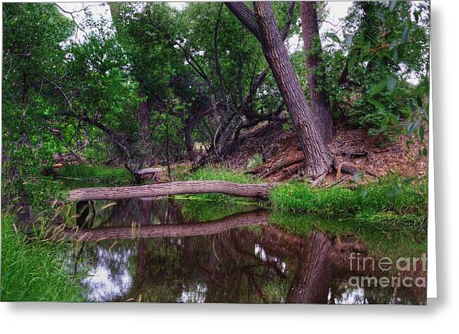 Granite Dells Reflections Greeting Cards - Calm Before The Storm Greeting Card by Thomas  Todd