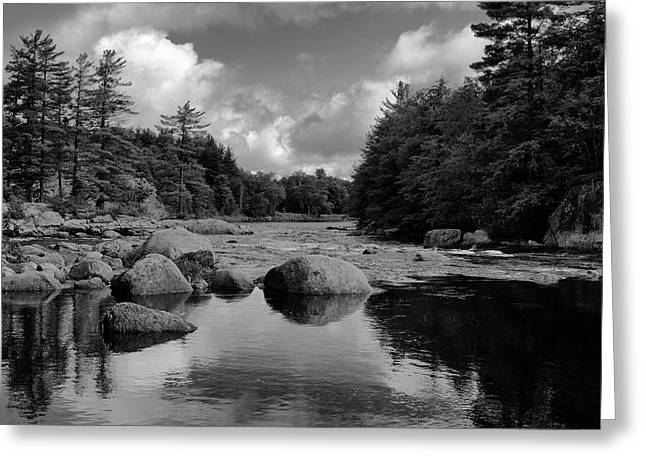 White River Greeting Cards - Calm Water on the Moose River 2 Greeting Card by David Patterson