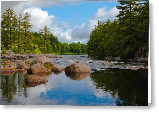 Calm Waters Greeting Cards - Calm Water on the Moose River Greeting Card by David Patterson