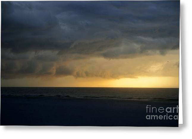 Pristine Beaches Greeting Cards - Calusa sunset Greeting Card by David Lee Thompson