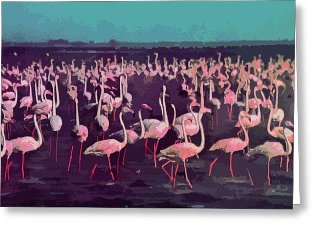 Shades Of Red Greeting Cards - Camargue Flamingos  Greeting Card by Elizabetha Fox