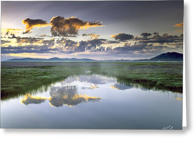 Camas Marsh Greeting Card by Leland D Howard