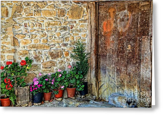 Historic Village Cross Greeting Cards - Cambarco_155A7649 Greeting Card by Diana Sainz