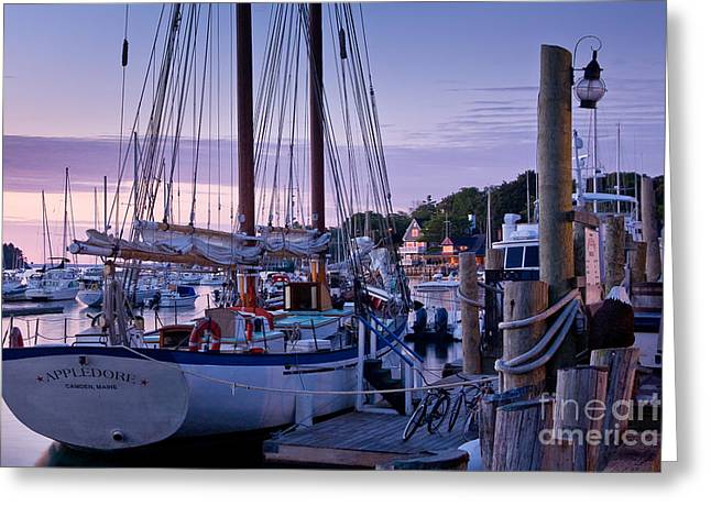 Mid-coast Maine Greeting Cards - Camden Windjammer Dawn Greeting Card by Susan Cole Kelly