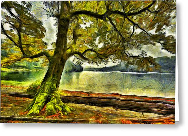 Cameron Lake Tree In Autumn Greeting Card by Mark Kiver