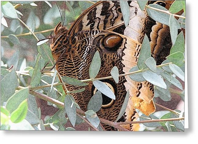 Photo Art Gallery Greeting Cards - Camouflage Greeting Card by Lisa S Baker