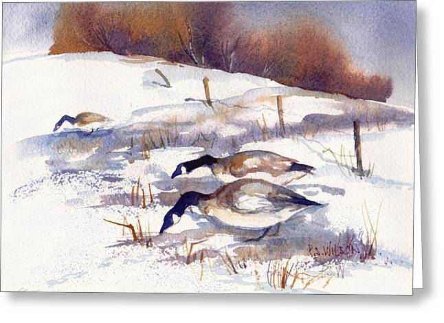 Snow Geese Paintings Greeting Cards - Canada Geese in Stubble Field II Greeting Card by Peggy Wilson