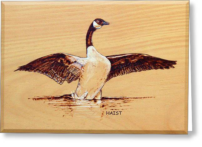 Geese Pyrography Greeting Cards - Canada Goose Greeting Card by Ron Haist