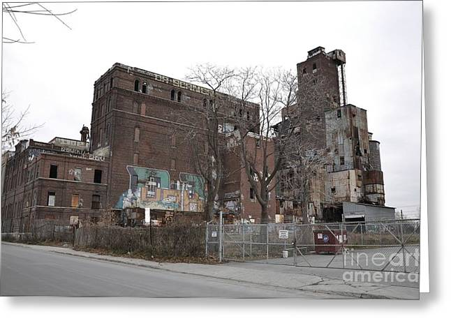 Maltings Greeting Cards - Canada Malting Plant Greeting Card by Reb Frost