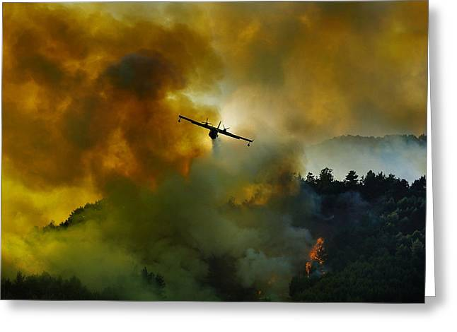 Aviation Greeting Cards - Canadair Aircraft In Action - Fighting For The Salvation Of The Forest. Greeting Card by Antonio Grambone