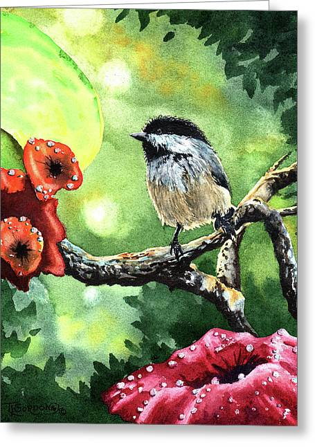 Canadian Chickadee Greeting Card by Timithy L Gordon
