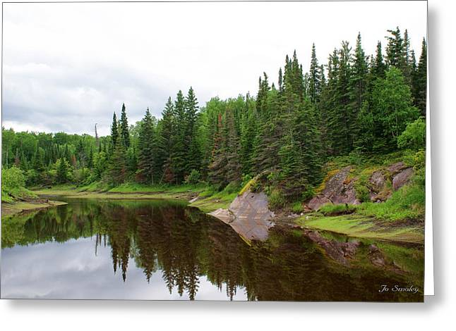 Pine Needles Greeting Cards - Canadian Landscape Greeting Card by Joanne Smoley