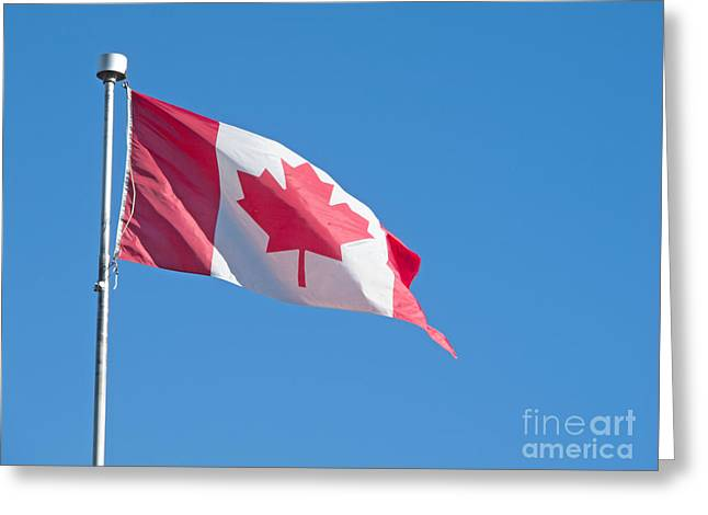 Greeting Cards - Canadian National Flag Greeting Card by Ann Horn