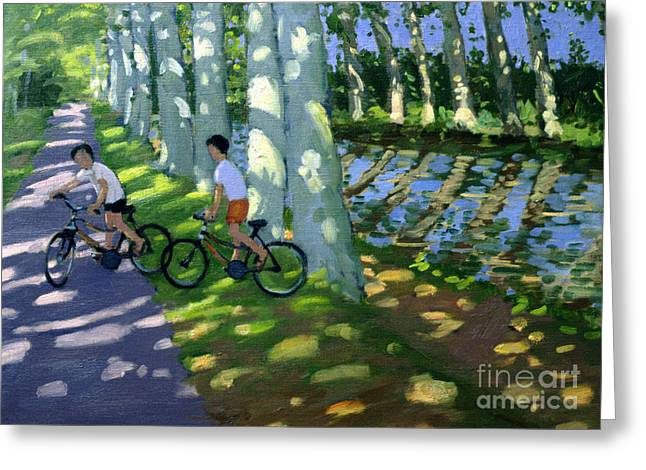 Dappled Light Greeting Cards - Canal du Midi France Greeting Card by Andrew Macara