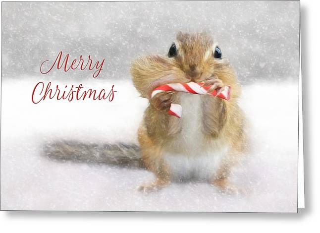 Candy Cane Christmas Greeting Card by Lori Deiter