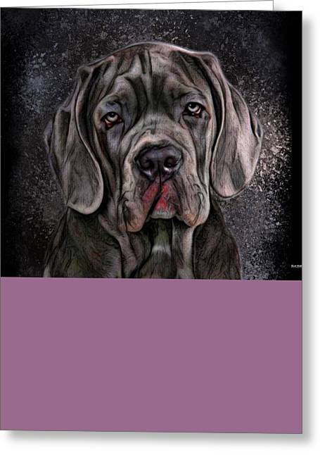 Guard Dog Greeting Cards - Cane Corso Portrait Greeting Card by Scott Wallace