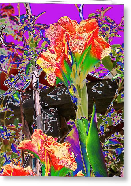 Canna Greeting Cards - Canna Abstract 8 Greeting Card by M Diane Bonaparte