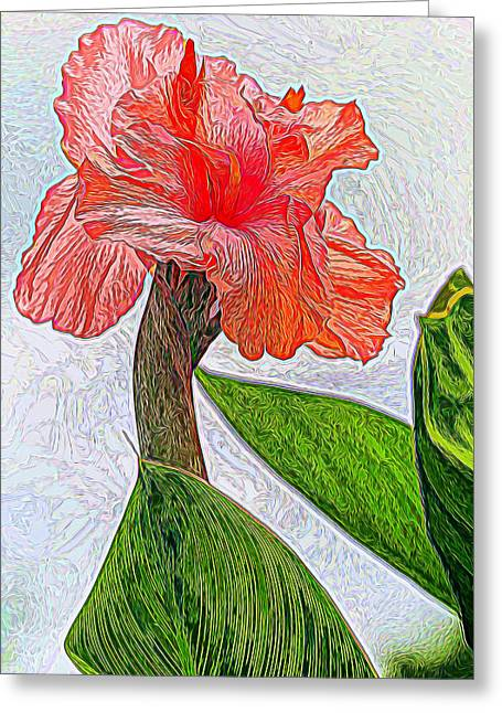 Canna Lily Art Greeting Card by Geraldine Scull